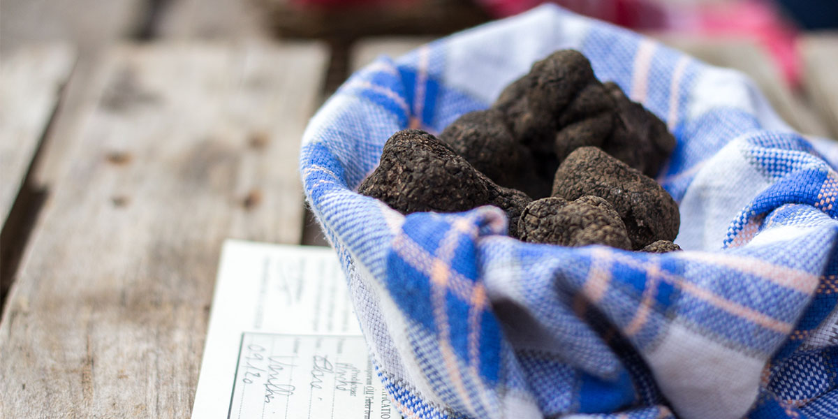 Truffle market in Lalbenque in Dordogne Valley in France