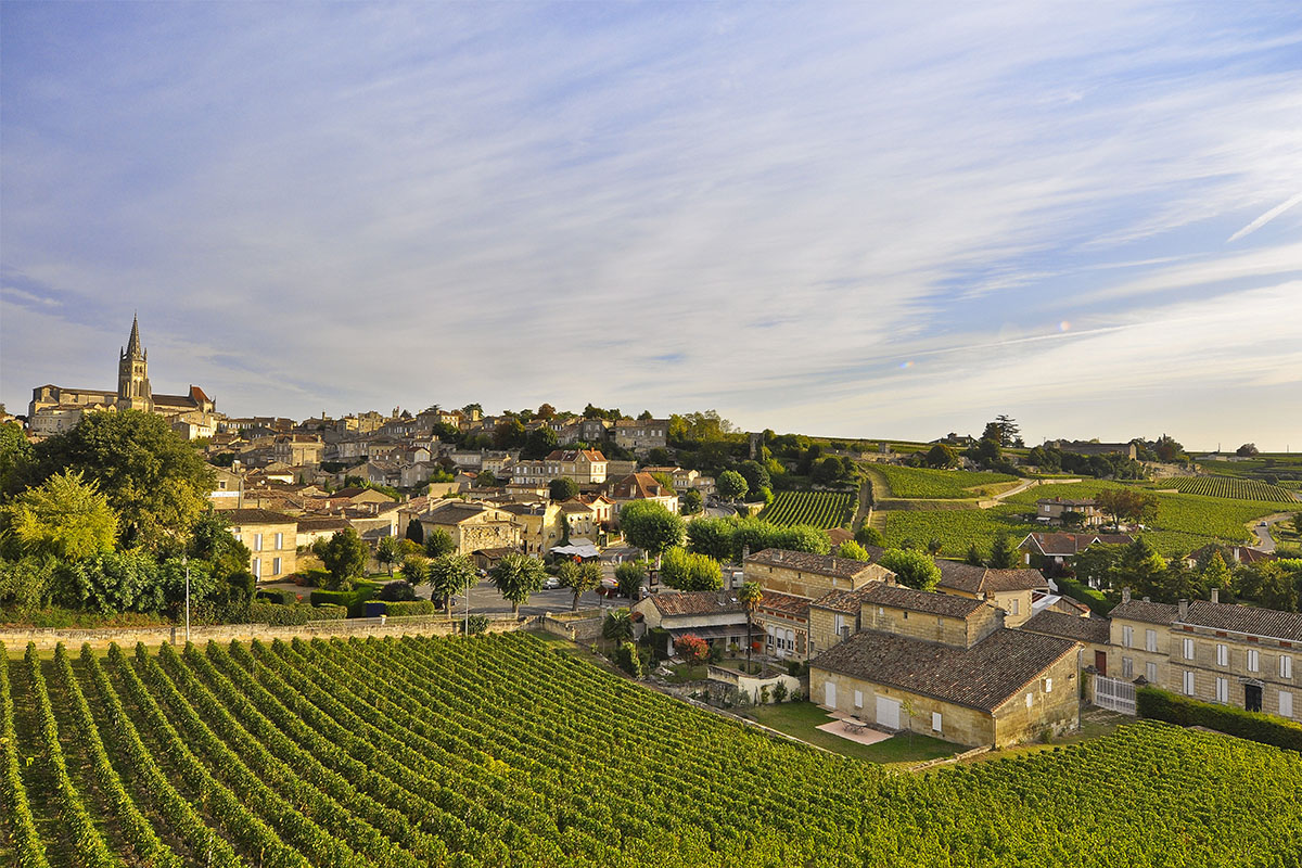The vineyards next to the village of Saint Emilion in Dordogne Valley in France